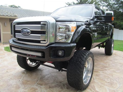 Show winner 2015 Ford F 250 PLATINUM monster truck for sale
