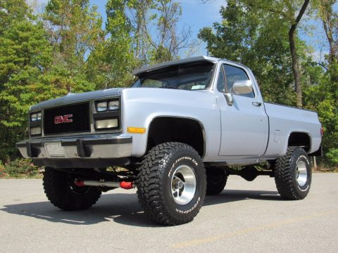 nice looking 1983 Chevrolet Pickups Short Wide monster for sale