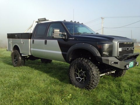 2003 Ford F150 For Sale >> 2008 Ford F 150 FX4 Crew Cab Lifted for sale