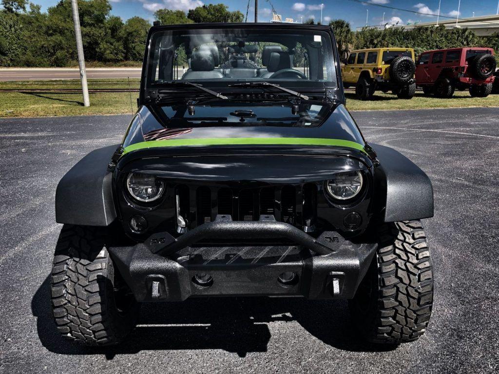 zombie slayer 2015 Jeep Wrangler Custom Lifted Monster