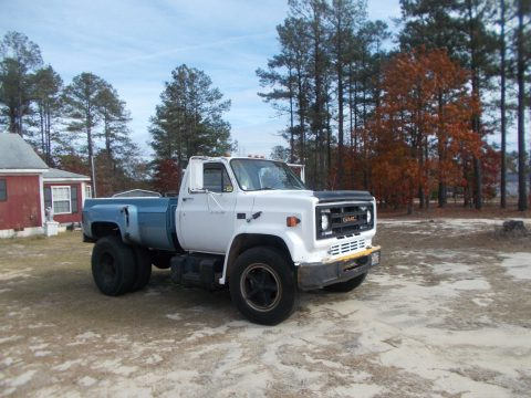 project 1983 Chevrolet monster truck for sale